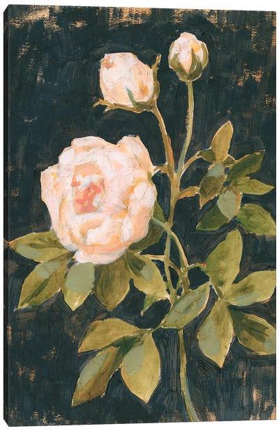 Moody Blooms II Canvas Art Print