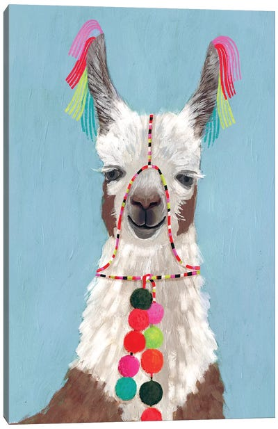 Adorned Llama I Canvas Art Print