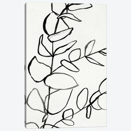 Sprig Contour II Canvas Print #VBR100} by Victoria Barnes Canvas Wall Art