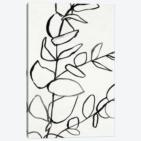 Sprig Contour II Canvas Print #VBR100} by Victoria Barnes Canvas Wall Art