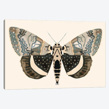 Neutral Moth I Canvas Print #VBR119} by Victoria Barnes Art Print