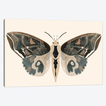 Neutral Moth II Canvas Print #VBR120} by Victoria Barnes Canvas Art