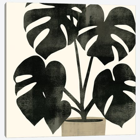 Plantling II Canvas Print #VBR126} by Victoria Barnes Canvas Print