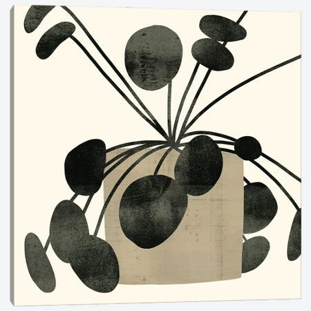 Plantling IV Canvas Print #VBR128} by Victoria Barnes Canvas Artwork