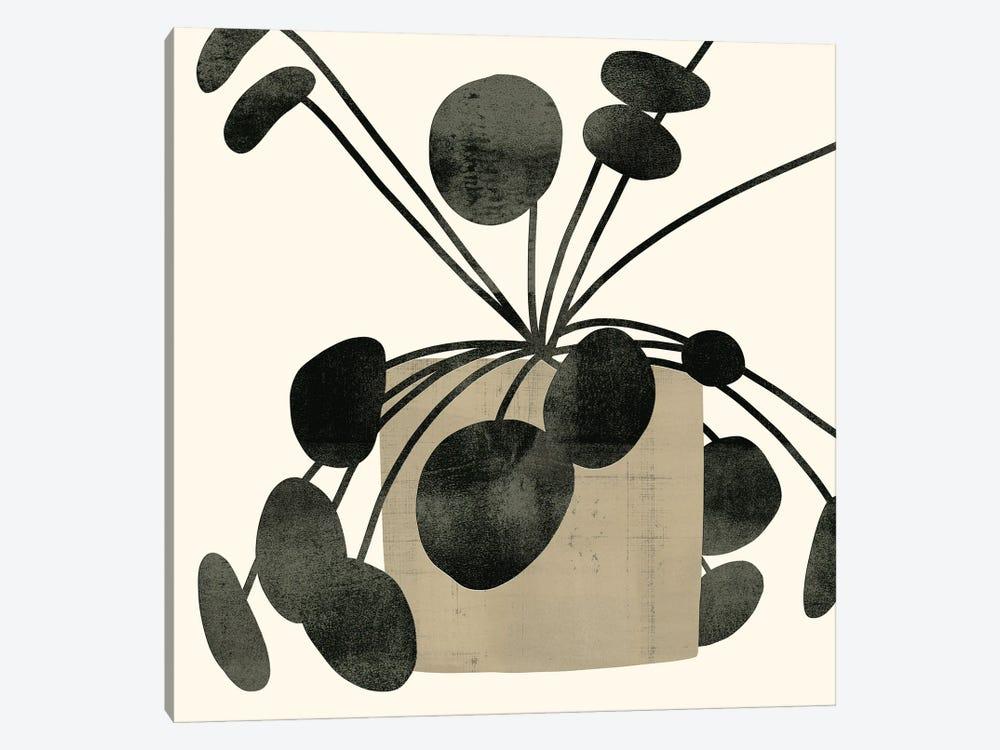 Plantling IV by Victoria Barnes 1-piece Canvas Art Print