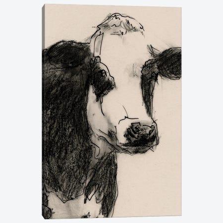 Cow Portrait Sketch I Canvas Print #VBR152} by Victoria Barnes Canvas Print