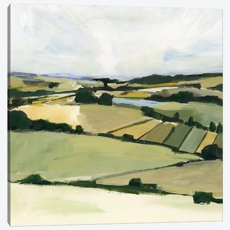Patchy Landscape II Canvas Print #VBR194} by Victoria Barnes Canvas Wall Art