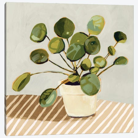 Plant on Stripes I Canvas Print #VBR196} by Victoria Barnes Canvas Artwork