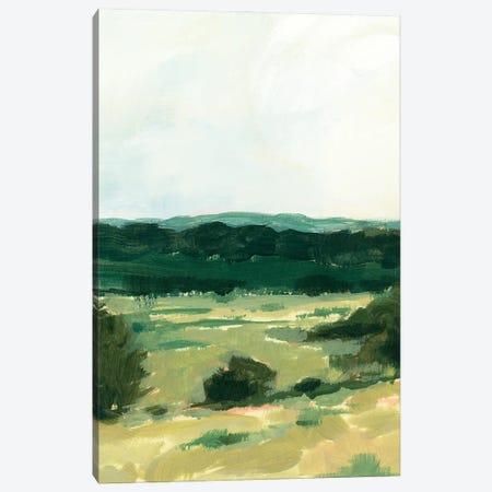 Treeline Vista II Canvas Print #VBR211} by Victoria Barnes Canvas Artwork