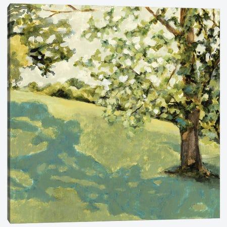 Sun Patch II Canvas Print #VBR30} by Victoria Barnes Canvas Print