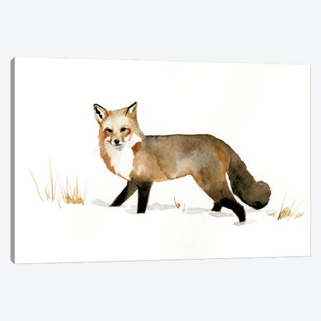 Winter Fox II Canvas Print #VBR38} by Victoria Barnes Canvas Art Print