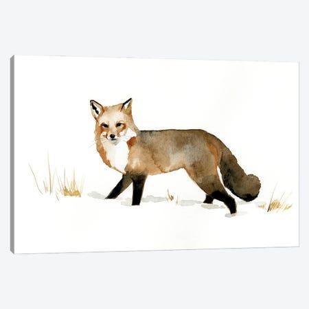 Winter Fox II Canvas Print #VBR38} by Victoria Barnes Canvas Art Print