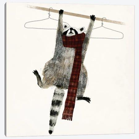 Rascally Raccoon I 3-Piece Canvas #VBR47} by Victoria Barnes Canvas Art Print