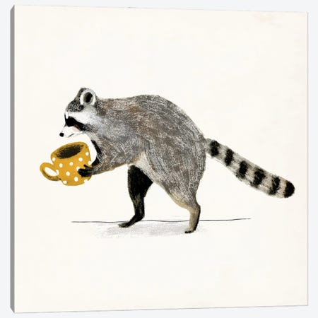Rascally Raccoon III Canvas Print #VBR49} by Victoria Barnes Canvas Wall Art