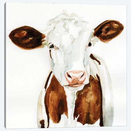 Cow Gaze I Canvas Print #VBR51} by Victoria Barnes Canvas Print