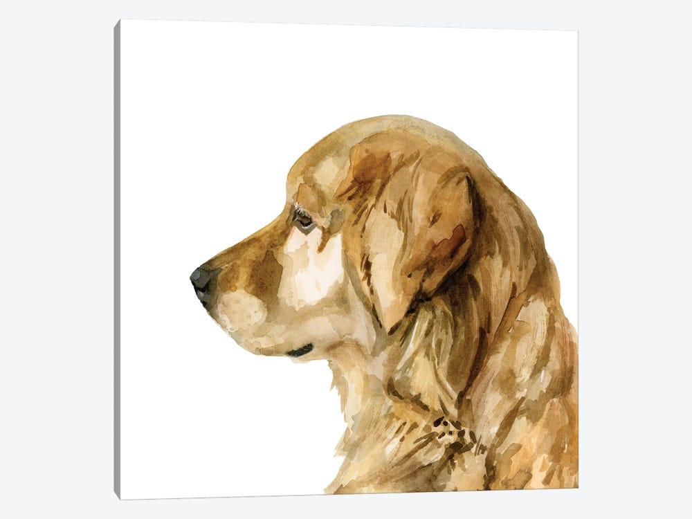 Pet Profile I by Victoria Barnes 1-piece Canvas Art Print