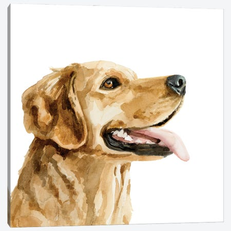 Pet Profile II Canvas Print #VBR56} by Victoria Barnes Canvas Art