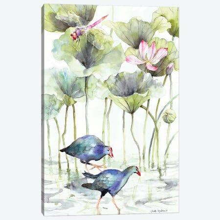 Coots Canvas Print #VBY16} by Violetta Boyadzhieva Canvas Print