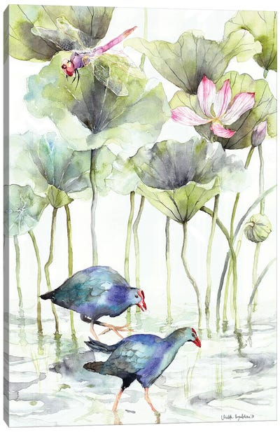 Coots Canvas Art Print