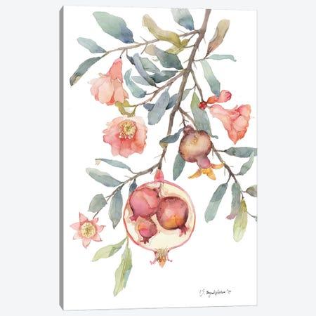 Expecting Pomegranate Canvas Print #VBY21} by Violetta Boyadzhieva Canvas Art Print