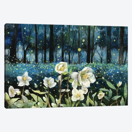 Fireflies Canvas Print #VBY23} by Violetta Boyadzhieva Canvas Art Print