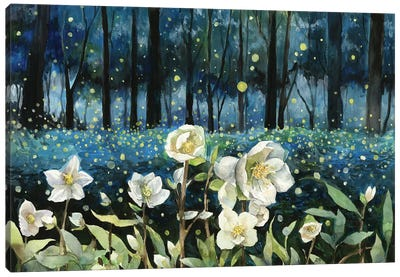 Fireflies Canvas Art Print