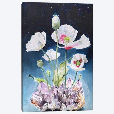 Somniferum Canvas Print #VBY51} by Violetta Boyadzhieva Canvas Wall Art