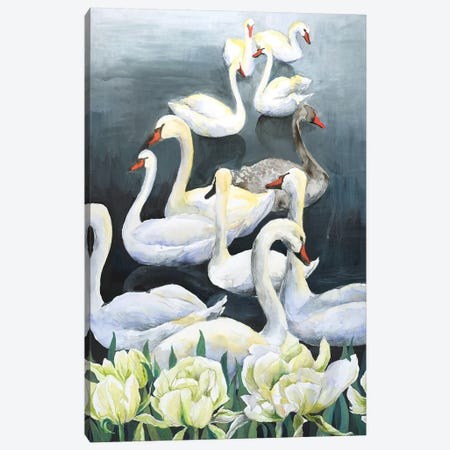 Swan Lake Canvas Print #VBY53} by Violetta Boyadzhieva Canvas Artwork