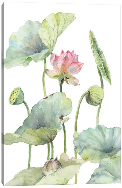 Lotus Home For A Little Mouse Canvas Art Print