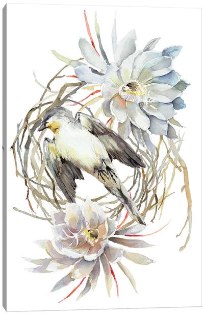 Bird Queen Canvas Art Print