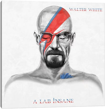 A Lab Insane Album Version Canvas Art Print