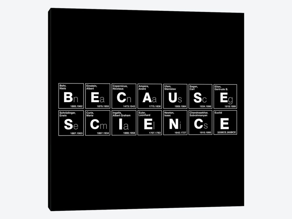 Because Science by Vincent Carrozza 1-piece Canvas Wall Art