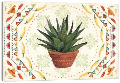 Tex Mex Fiesta II Canvas Art Print