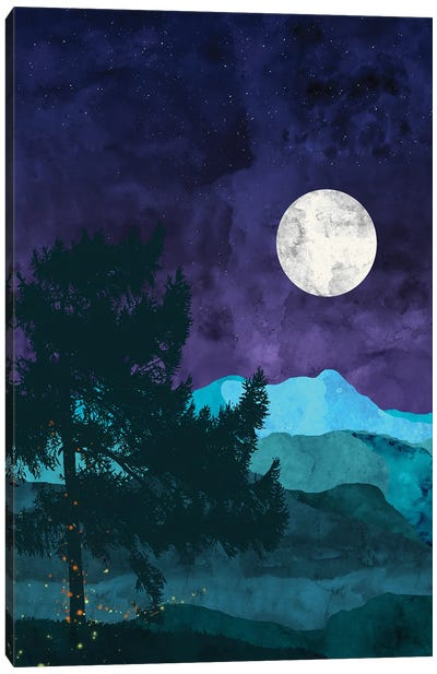 Nocturnal Mountains Canvas Art Print