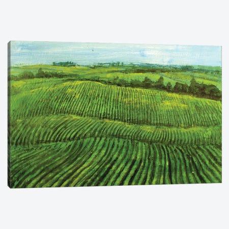 Meadows Farms Canvas Print #VDR20} by Vishalandra Dakur Canvas Art