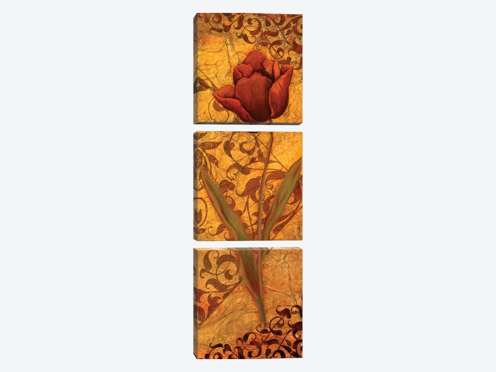 Red Tulip II by Viv Eisner 3-piece Canvas Wall Art