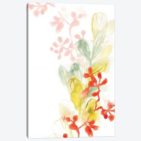 Sea Branch II Canvas Print #VES162} by June Erica Vess Art Print