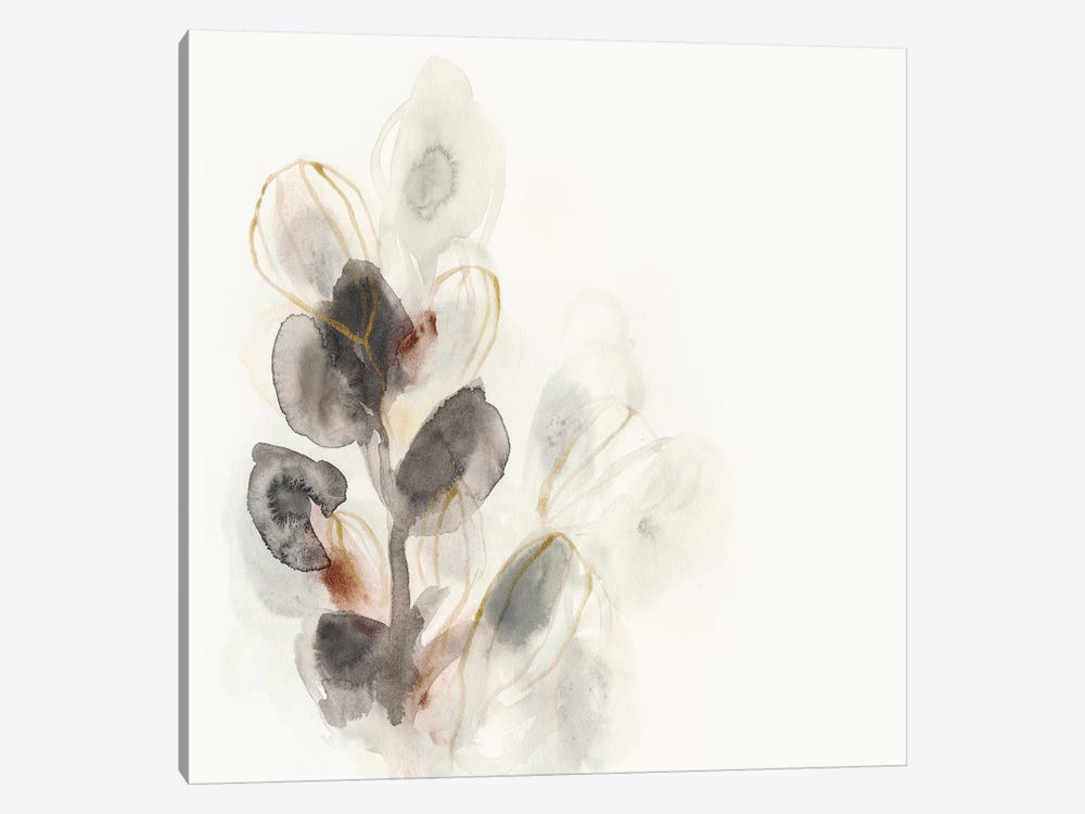 Seed Pod I by June Erica Vess 1-piece Canvas Artwork