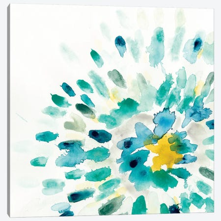 Starburst Floral II Canvas Print #VES172} by June Erica Vess Canvas Wall Art