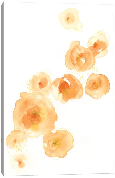 Falling Blossoms I Canvas Art Print