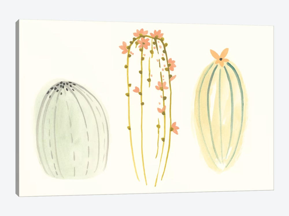 Funky Succulents I by June Erica Vess 1-piece Canvas Artwork