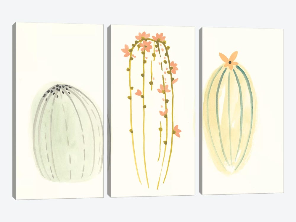 Funky Succulents I by June Erica Vess 3-piece Canvas Art