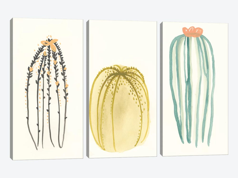 Funky Succulents III by June Erica Vess 3-piece Canvas Wall Art