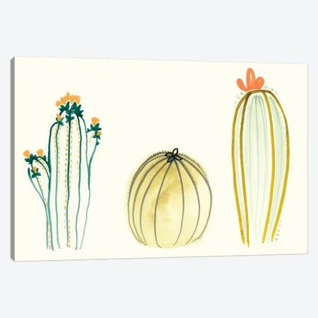 Funky Succulents IV Canvas Print #VES83} by June Erica Vess Canvas Art