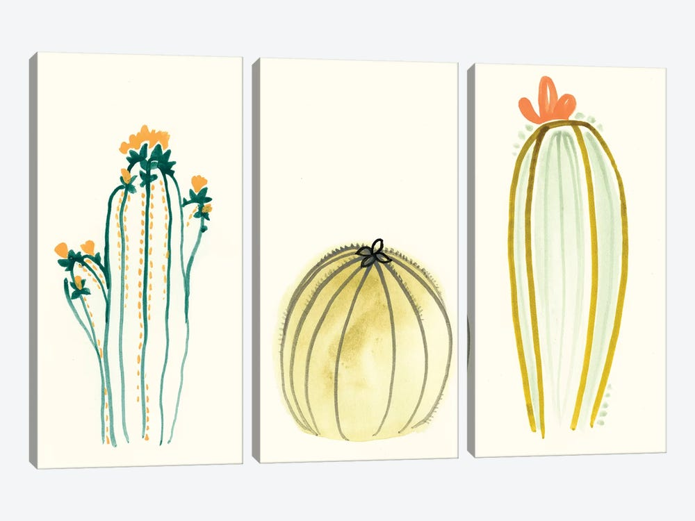 Funky Succulents IV by June Erica Vess 3-piece Canvas Art Print
