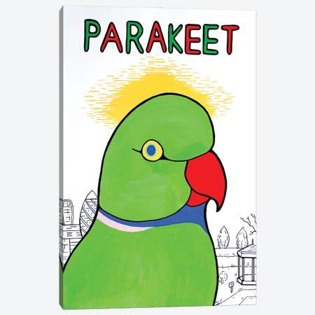 Parakeet Canvas Print #VGG31} by Ian Viggars Canvas Artwork