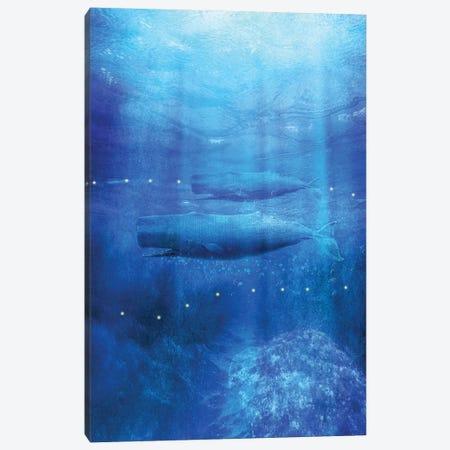 Save The Whales Canvas Print #VGO107} by Viviana Gonzalez Canvas Art Print