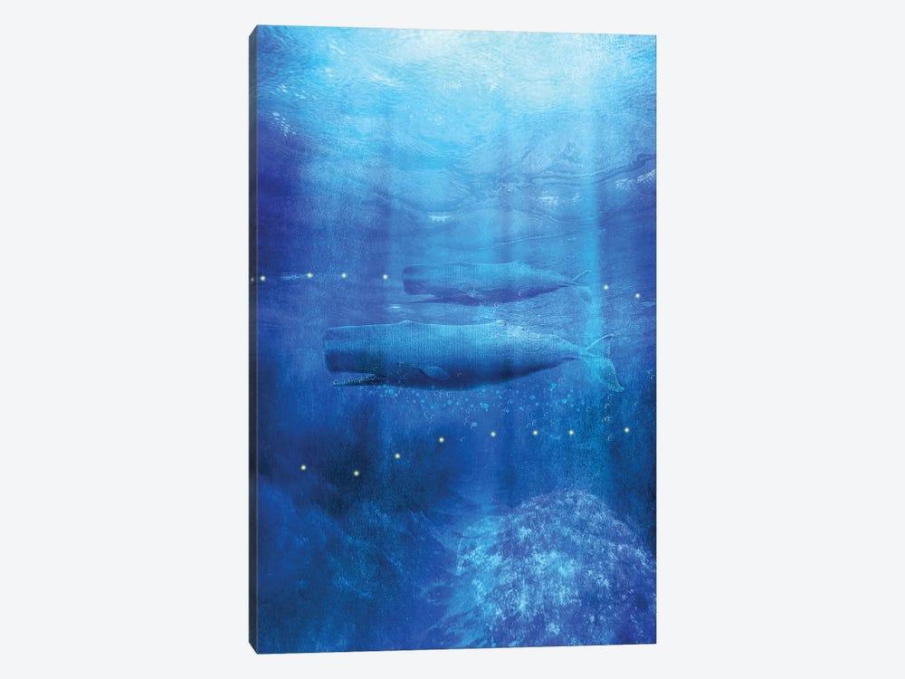 Save The Whales by Viviana Gonzalez 1-piece Canvas Art