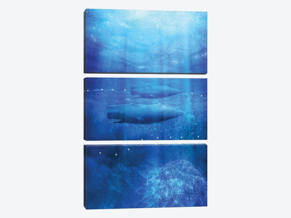 Save The Whales by Viviana Gonzalez 3-piece Canvas Wall Art