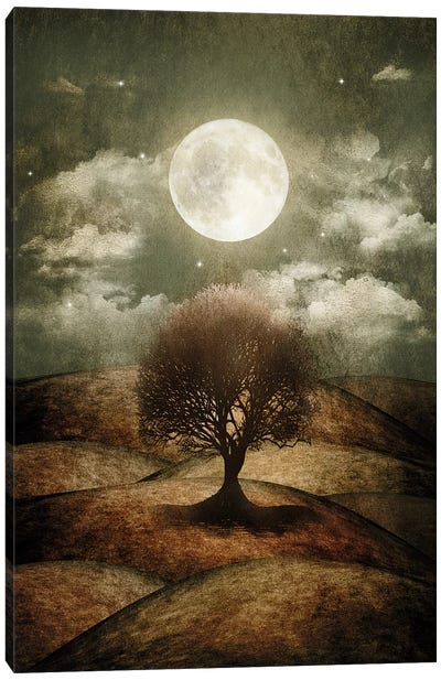 Once Upon A Time... The Lone Tree Canvas Art Print